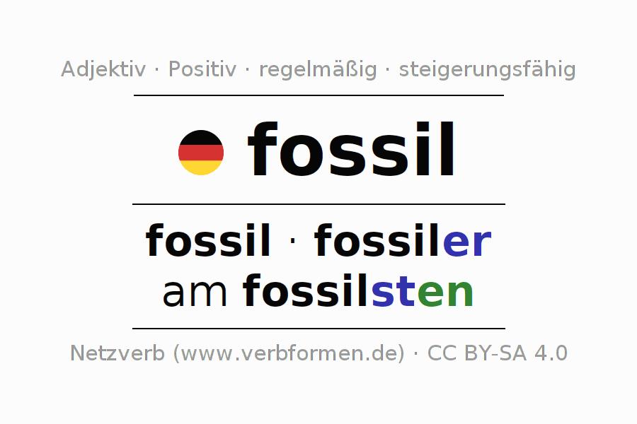 Luxury Fossil Arbeitsblatt Pictures - Kindergarten Arbeitsblatt ...