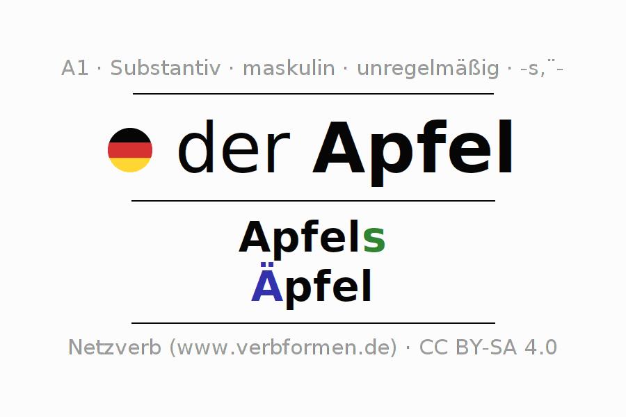 Deklination Apfel | Alle Formen, Plural, Regeln, Sprachausgabe