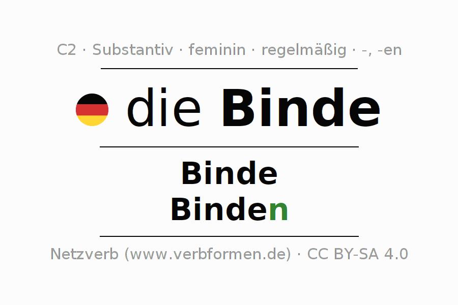 Deklination | Binde | Alle Formen, Plural, Regeln und Downloads