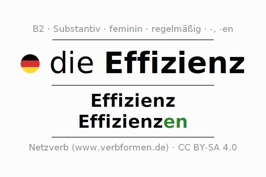 Deklination | Effizienz | Alle Formen, Plural, Regeln und Downloads