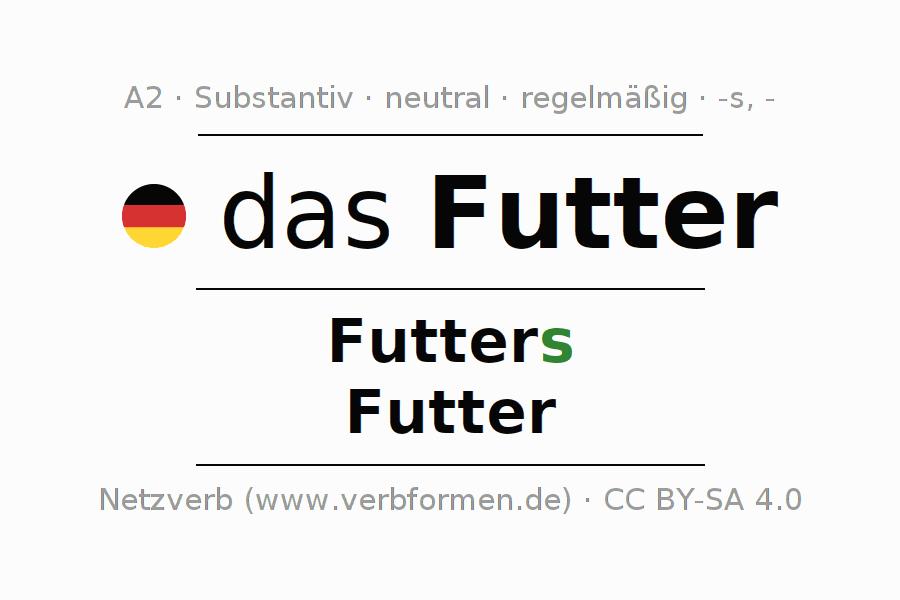 Deklination | Futter | Alle Formen, Plural, Regeln und Downloads