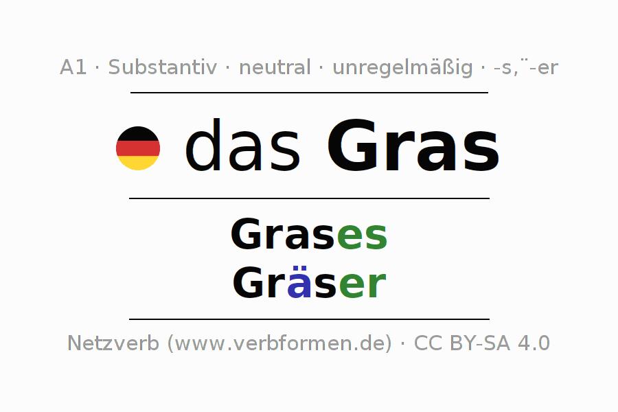 Deklination Gras   Alle Formen, Plural, Regeln, Sprachausgabe