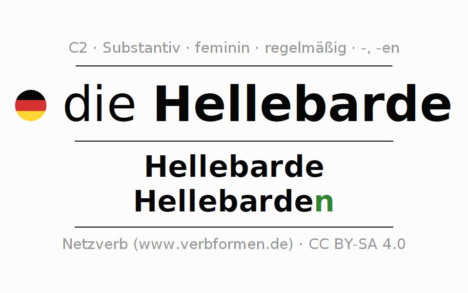 Funky Substantiv Schnitzeljagd Arbeitsblatt Frieze - Kindergarten ...