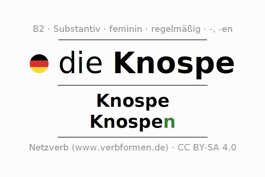 Groß Plural Und Singular Besitzergreifend Substantive Arbeitsblatt ...