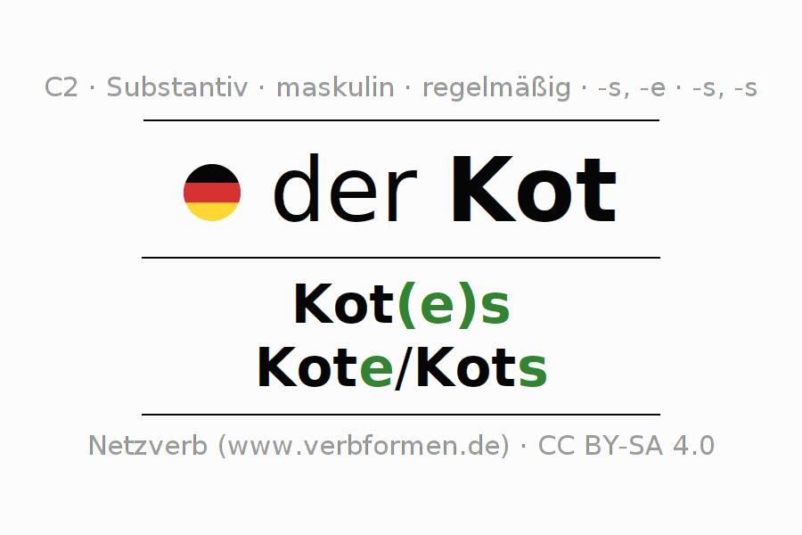 Deklination Kot Alle Formen Plural Regeln Sprachausgabe