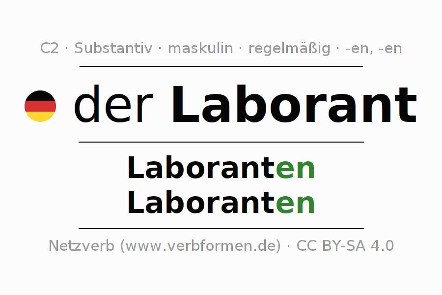 Deklination Laborant | Alle Formen, Plural, Regeln, Sprachausgabe