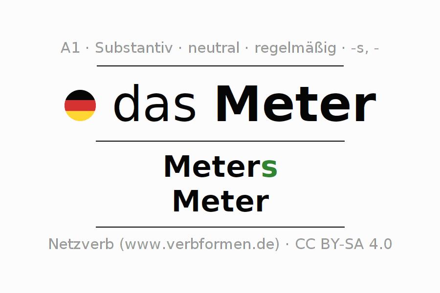 Deklination Meter | Alle Formen, Plural, Regeln, Sprachausgabe