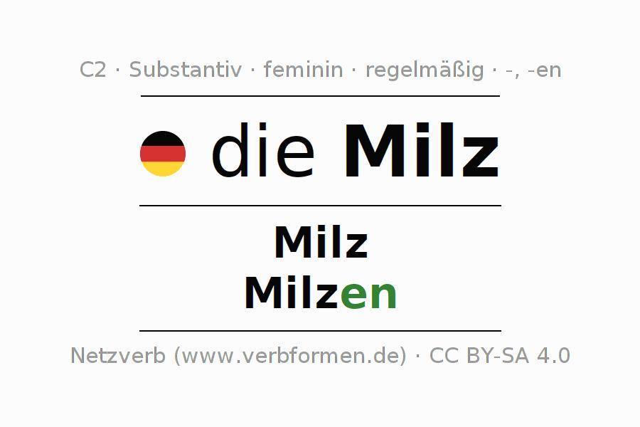 Erfreut Milz Zeitgenössisch - Anatomie und Physiologie des ...