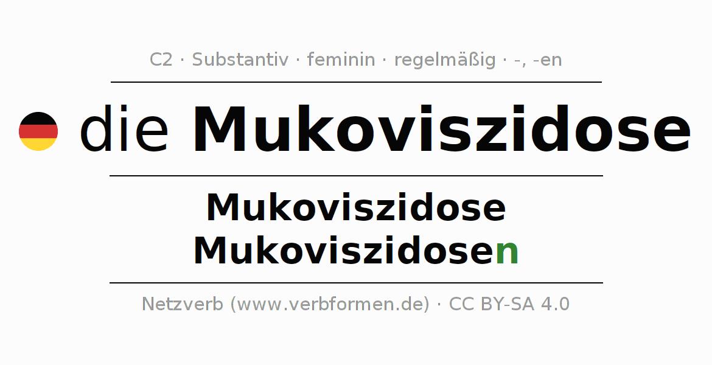 Fein Mukoviszidose Anatomie Bilder - Anatomie Ideen - finotti.info