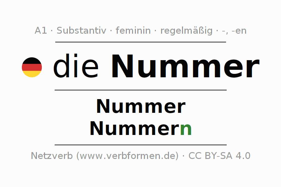 Deklination Nummer | Alle Formen, Plural, Regeln, Sprachausgabe