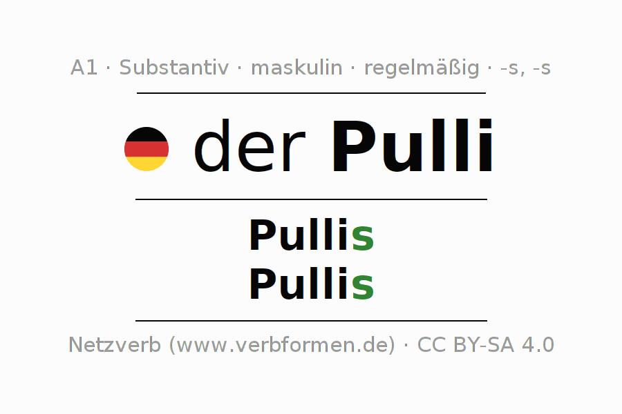 Deklination Pulli | Alle Formen, Plural, Regeln, Sprachausgabe