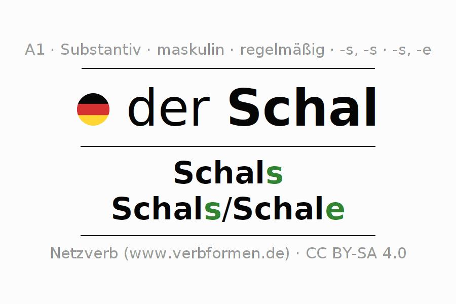 Deklination | Schal | Alle Formen, Plural, Regeln und Downloads