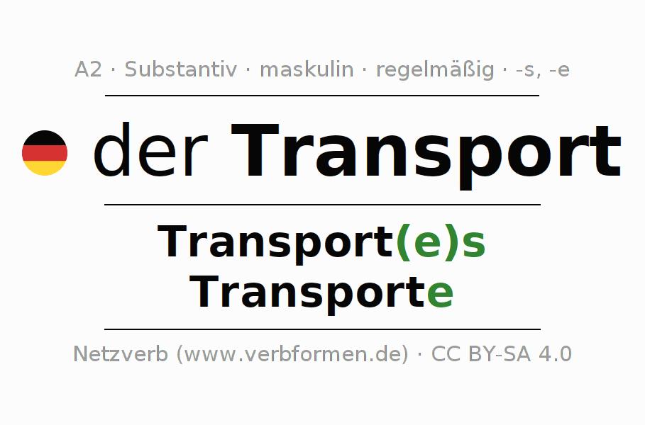 Deklination | Transport | Alle Formen, Plural, Regeln und Downloads