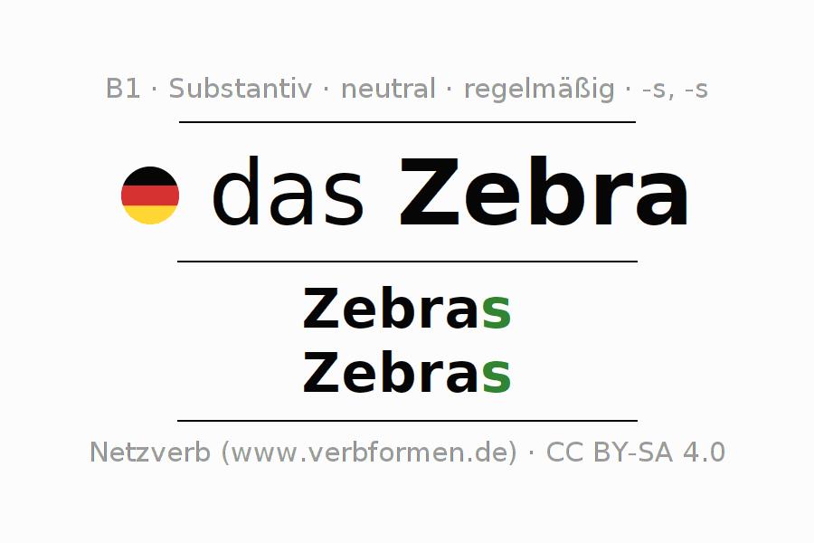 Deklination | Zebra | Alle Formen, Plural, Regeln und Downloads